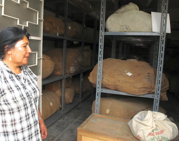 In Peru, the researchers scanned mummies from the Puruchuco Museum, near Lima. Museum Director Clide Valladolid stands near stored mummies.