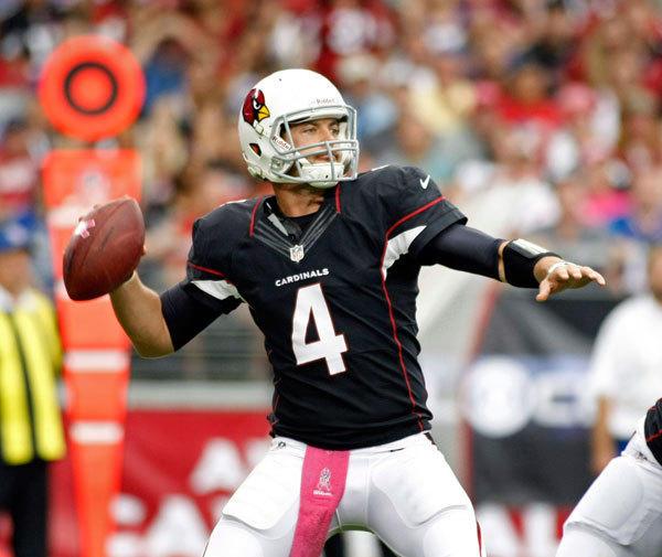Arizona Cardinals quarterback Kevin Kolb drops back to pass against the Buffalo Bills.