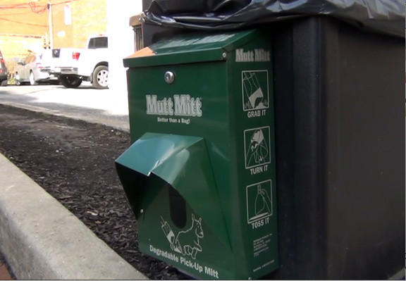 Trash cans with dispensers stocked with degradable dog waste bags line Hagerstown's downtown, yet the problem persists of owners failing to clean up after their pets.
