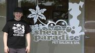 For nine years, Shear Paradise Pet Salon has been grooming and caring for dogs and cats that have walked (or been carried) through its doors. As owner Claudia Kawalec Eggen has expanded her business in a new location with retail space, she and her staff have remained dedicated to their mission of providing quality, personalized care to dogs and cats at 400 N. Seymour Ave. in Mundelein.