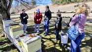 Many reasons — scientific, philosophical, practical and otherwise — draw people each spring to the Carroll County Beekeepers Association's annual Beekeeping Basics class, part of Carroll Community College's Continuing Education Series.