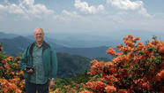 Don Hyatt, well-known for his extensive knowledge of azaleas (Rhododendron spp) discusses native azaleas at 6:45 p.m  Thursday, March 21, at the next meeting of the John Clayton Chapter, Virginia Native Plant Society. The meeting will be held at the Yorktown Public Library at Battle Road and Route 17, just before Yorktown High School.