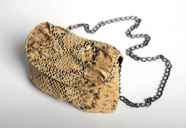 From Sun Magazine: Six signs of spring - Snakeskin