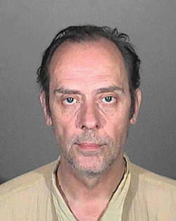 Bauhaus' Peter Murphy is being held on suspicion of causing injuries while driving under the influence of drugs or alcohol, felony hit-and-run and possessing methamphetamine, police said.