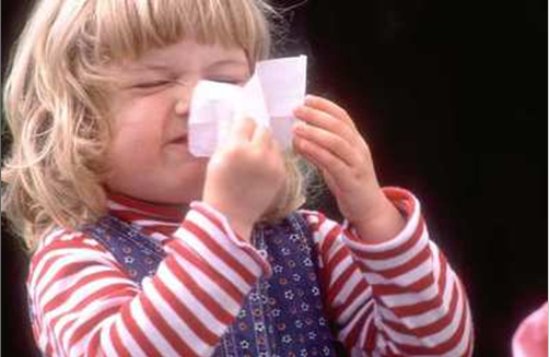 Lengthening hay fever season