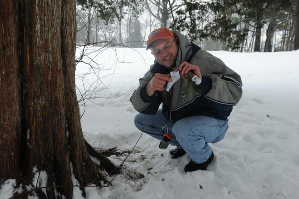 "Joe Krukowski of Bloomfield opens a geocache at the base of a cedar tree in Fernridge Park in West Hartford during a snowy and rainy Tuesday afternoon. They can come in small, cleverly disguised containers to containers the size of an ammo box, he said. He's been a geocacher for five years now, using his GPS to zero in on treasures hidden in a variety of locations -- some are even stashed underwater, he said. The GPS gets you close, but its not exact, so there is still some sleuthing to be done when you are close to a hidden object, he said. ""You look for little things that just don't belong,"" adding that the difficultly level goes from easy to, well, ""there's some evil ones out there.""  Krukowski is a member of the Central Connecticut Cachers, a group which meets on the first Tuesday of each month. He said that there are about 300 cachers in the state and encourages anyone who wants to know more about geocaching to go to Geocaching.com. This particular geocache was called ""Just some shade in the park,"" and if he had been the first to find it, a coin inside the container would be his. ""But, we didn't get it,"" he said."
