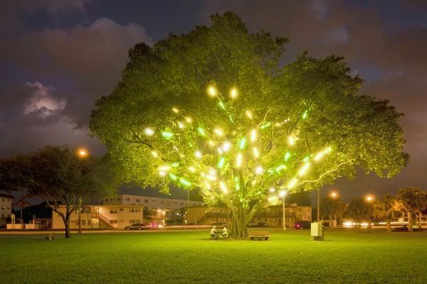 "Mark Handforth's ""Electric Tree"" installation was given by the artist to the Museum of Contemporary Art, North Miami to honor the museum's 15th anniversary exhibit ""Pivot Points: 15 Years and Counting."" The show closes May 19."