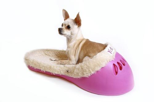 "Pet bed, $69.95, <a href=""http://sasquatchpetbeds.com"">sasquatchpetbeds.com</a>"