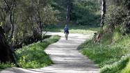 Follow the winding path at Elysian Park