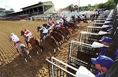 After a night and morning of rain, 13 horses break from the gate on what was upgraded to a fast course.