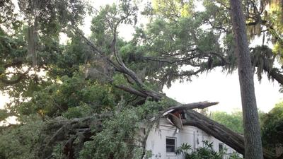 Fierce storms knock out power, uproot trees across area