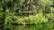 Pictures: Washington Oaks Gardens State Park, Palm Coast