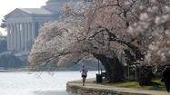 100 things to do in D.C. [Pictures]