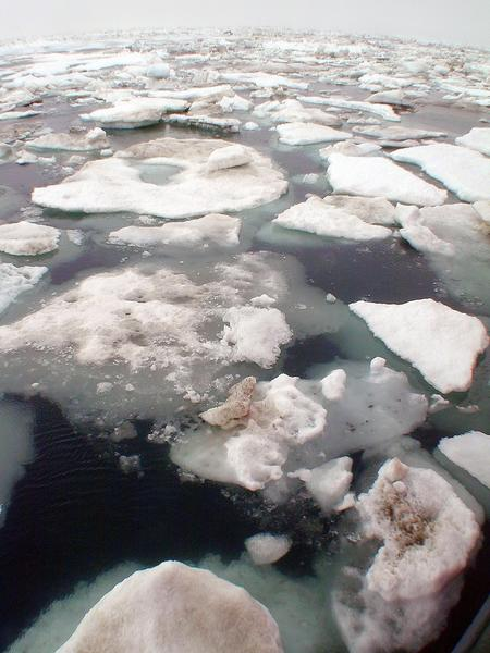 The loss of Arctic sea ice is linked to extreme weather patterns in the U.S. and other areas of the Northern Hemisphere, according to researchers.