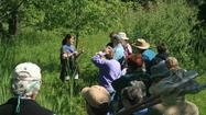 One Saturday a month, participants in the Emmet Conservation District's master naturalist program can spend the day learning about conservation, raptors, dune ecology, invasive species and more.