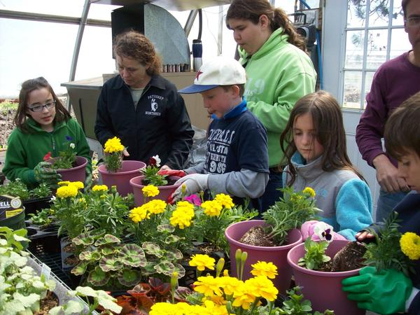 Members of the 2012 Jr. Master Gardener class at Lincoln school in Petoskey learn about container planting at Coveyou farm market.
