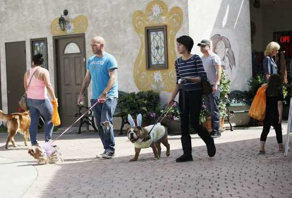 John McCoy and his fiance, Nikki Frick, with their dogs Pringles, left, and Capt. Knuckles, right, search for Easter eggs during the K-9 Spring Fling and Easter Egg Hunt at the Old World Village in Huntington Beach on Saturday.