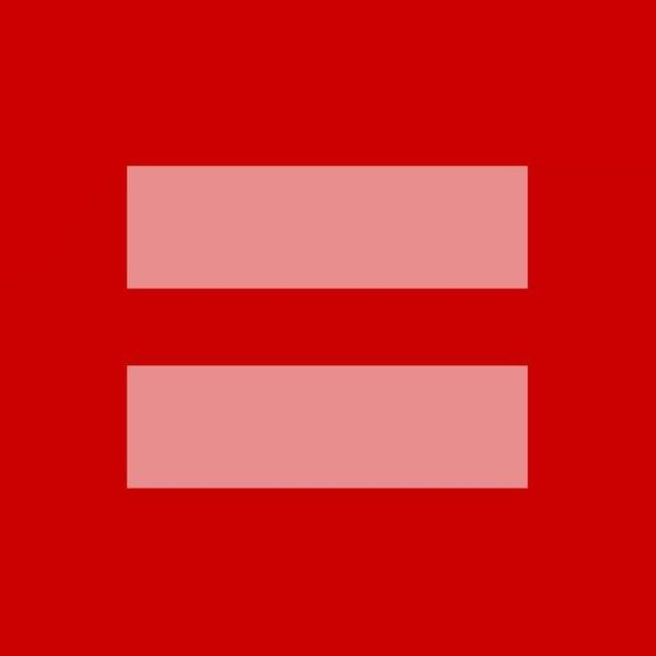 The Human Rights Campaign's gay marriage logo has gone viral and quickly became a meme.