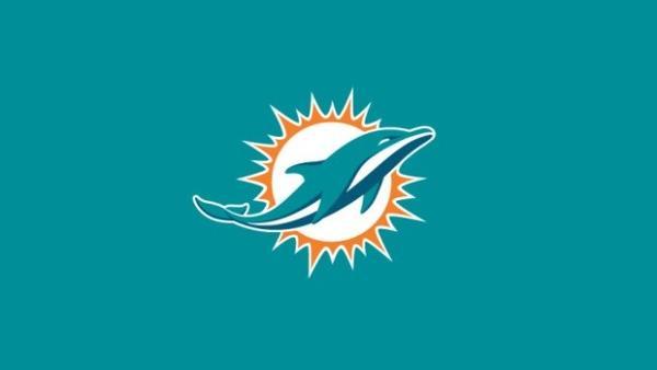 The Miami Dolphins' new logo.