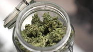 Legalizing pot will put teens in jeopardy