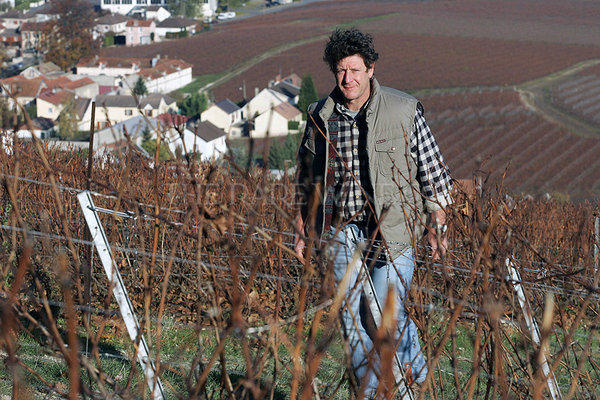 Anselme Selosse of the famed Jacques Selosse Champagne house in his vineyards at Avise, France. Last week, thieves broke into the cellars and stole thousands of bottles of Champagne.