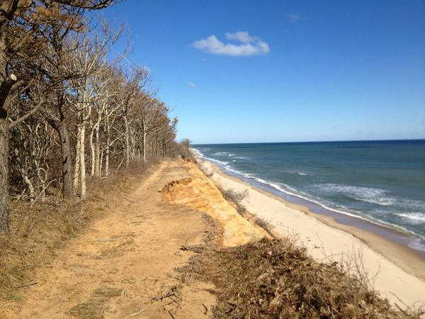 An old road along the dunes of Cape Cod is eroded.