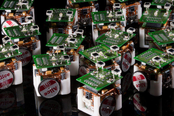 Scientist Simon Garnier and colleagues used a swarm of tiny dice-sized robots to investigate the collective behavior of Argentine ants.