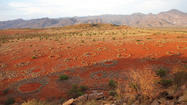 'Fairy circles' in the Namib Desert