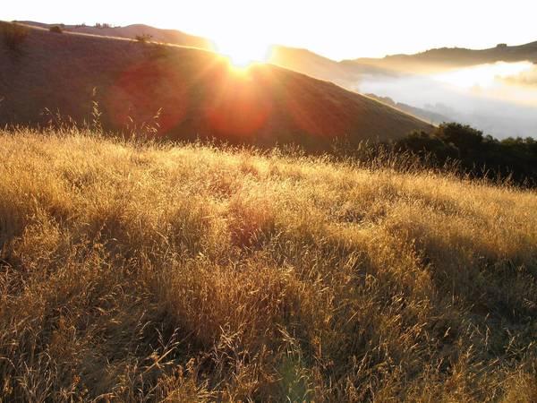 The idylllic grounds at Spirit Rock Meditation Center in Woodacre, Calif.