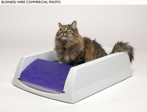 Tips on traveling with pets - For cats, take disposable litter boxes