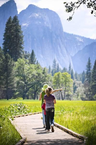 Boardwalk in Yosemite Valley.