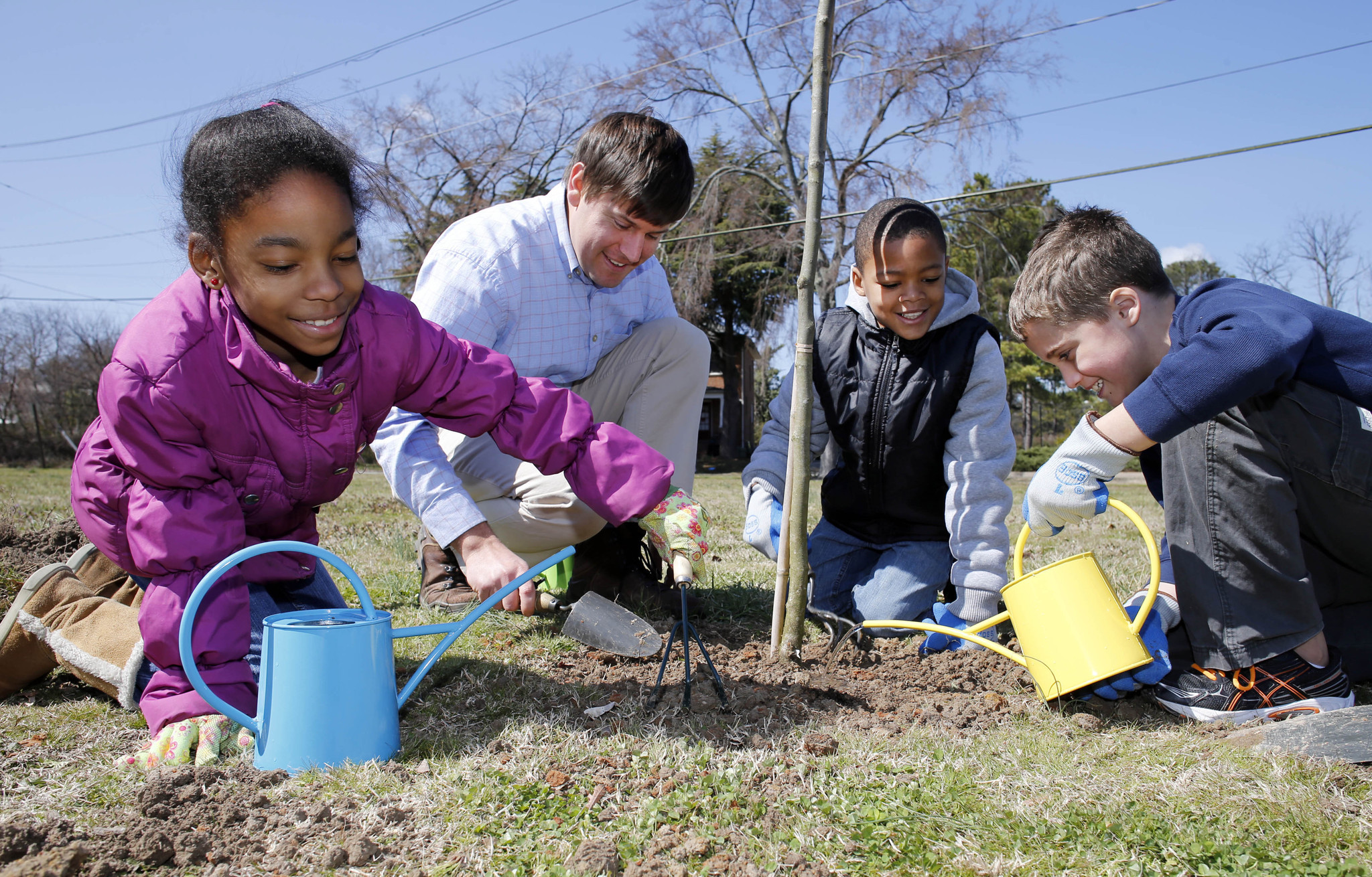 Dominion virginia power tree project gives redbud for Domon power release