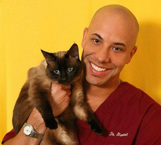 Dr. Kwane Stewart is the American Humane Assn.'s new chief veterinary officer.