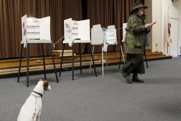 A lone voter casts her ballot at a polling station in Los Angeles' March 5 election, which had a turnout of only 21%. Elections that do not coincide with the general presidential election tend to have significantly lower voter turnouts.