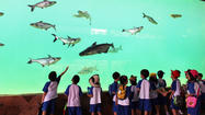 Singapore: New theme park focuses on imperiled river habitats