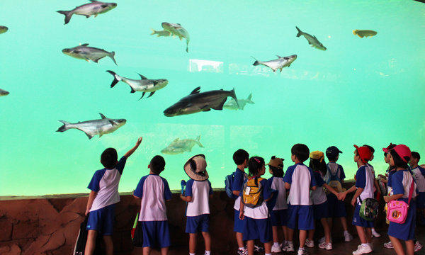 The new River Safari in Singapore has one of the world's largest collections of freshwater animals.