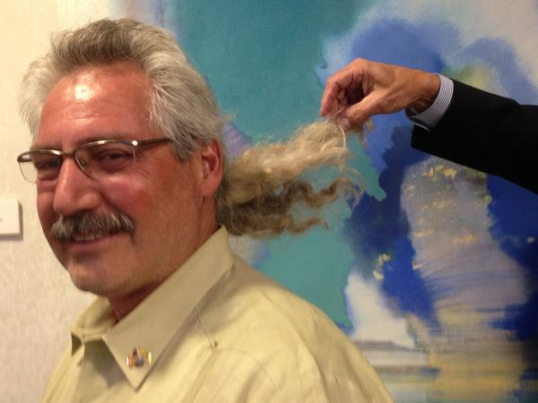Hollywood Commissioner Peter Hernandez has promised to auction his ponytail for charity -- and for the right price.