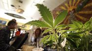 WASHINGTON -- A majority of Americans support legalizing marijuana, a new poll indicates, with the change driven largely by a huge shift in how the baby boom generation feels about the drug of their youth.