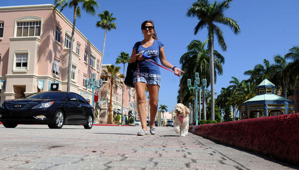 fl-boca-raton-walking-a, Boca Raton, 4/3/2013 -- Iris Perez de Morales of Weston walks her dog, Bella, through Mizner Park in Boca Raton. Mark Randall, South Florida Sun Sentinel