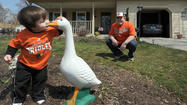 Rejuvenated Orioles fans can't wait for home opener