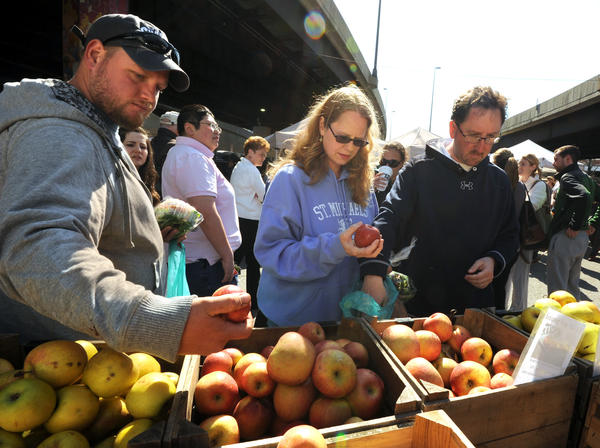 Examining apples at Reid's Orchard from left are: Chris Zorn, Shelley Manner, center, and Ezra Buchdahl.