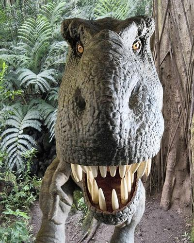 In RoboSUE, visitors will can get face-to-face with a T. rex who responds to her visitors