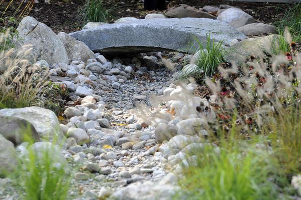 Pollution Preventer Rain Gardens Keep House Dry Save