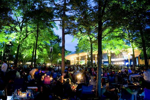 An evening at Ravinia