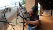 A pioneering research effort that uses horses to help wounded veterans readjust to society has found a long-term home in Osceola County.
