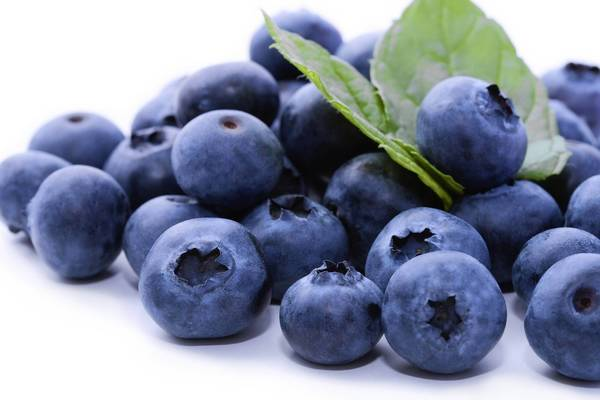 Tasty fresh blueberries