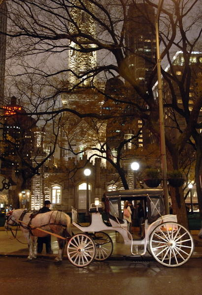 Blair Cushman and his horse carriage wait for customers at Michigan Avenue and Pearson Street.