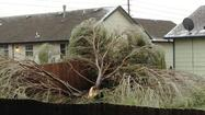Wichita residents who suffered damage from Tuesday's ice storm must clean up their own debris.