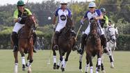 Gay Polo Tourney returns to Wellington