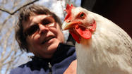 "Cathy Hudson knew the practice of raising chickens in her backyard made her part of a growing suburban trend, but when she learned Williams-Sonoma, purveyor of pricey kitchen gear, had started selling chicken coops — including a two-level cedar model for $1,499.95 — she thought, ""OK, we have arrived."""
